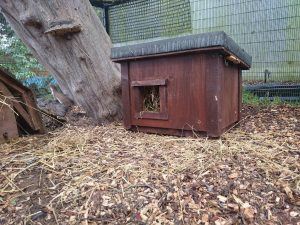 One of Billy's Huts